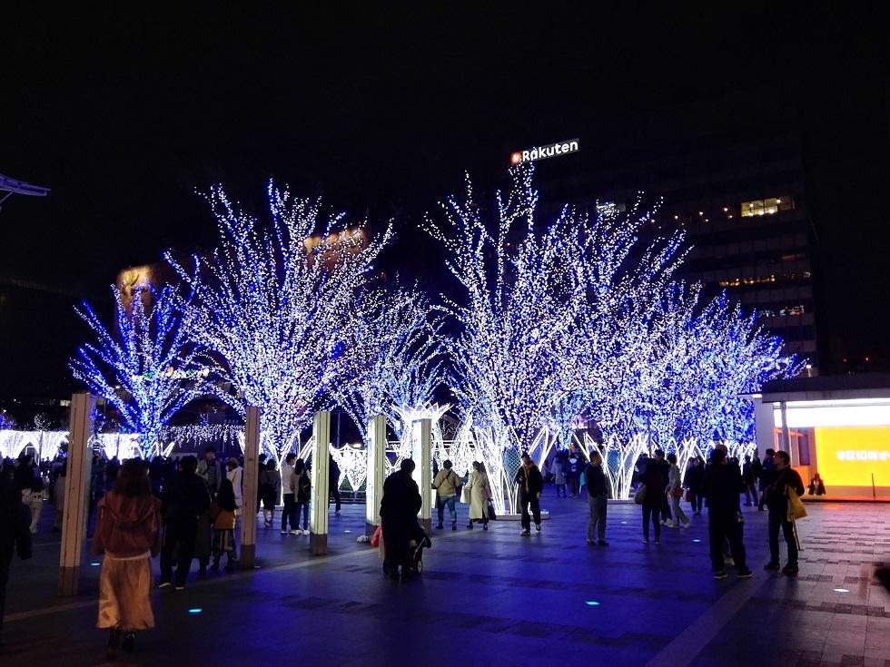 光の街・博多 光の森ゾーン