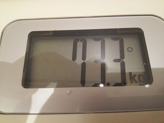 73.3kg
