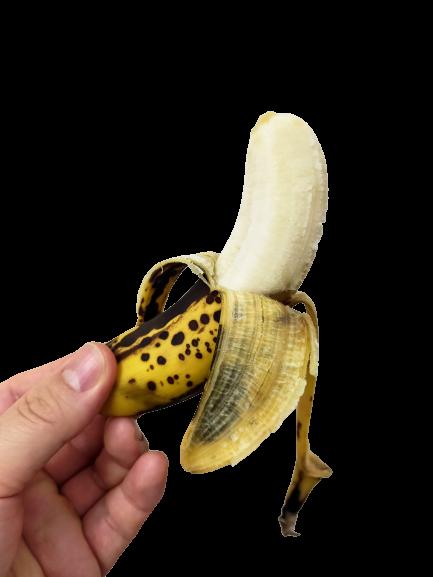 立派なバナナ