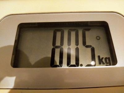 80.5kg