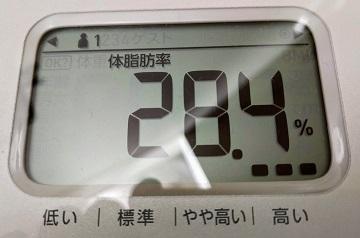 28.4kg