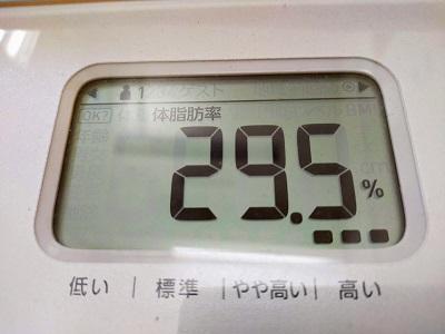 29.5%